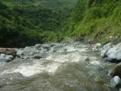 Riviertje best wild watertje